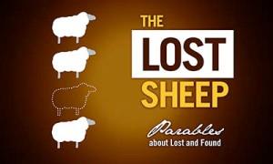 LostSheep_web